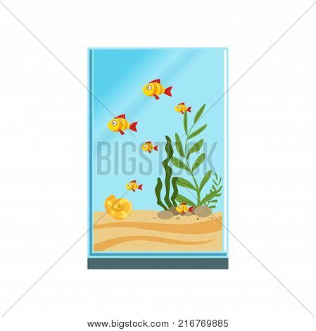 Exotic fishes in tall glass aquarium with sand, stones and different green algae. Tank with sea creatures. Underwater world concept. Colorful flat vector illustration isolated on white background.