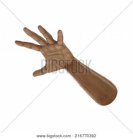 Man Hands Swarthy Skin on white background. 3D illustration