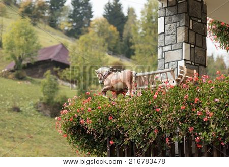 Bran Romania October 09 2017 : Decorative horse with a wagon attached to a flowerpot with flowers on the corner of the house on the periphery of Bran in Romania