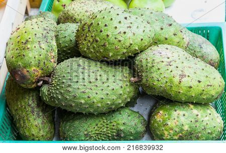 Green guyabano fruit on street market in Manila. Philippines.