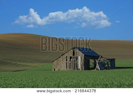 Abandoned Barn in Rural in Palouse Washington