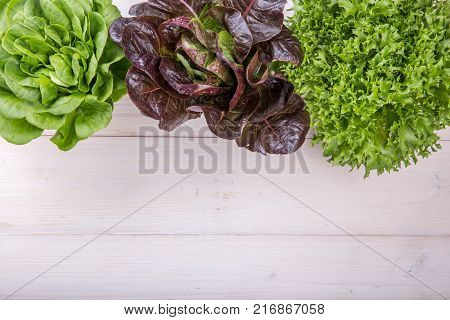 Three kinds of lettuce on white wooden backround