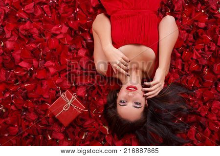 A sexy brunette girl in a red dress, lies in the red rose petals near a small red gift box and holds both hands near the face. View from above.