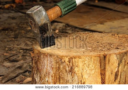 a wood splitter on a timber block ready for work