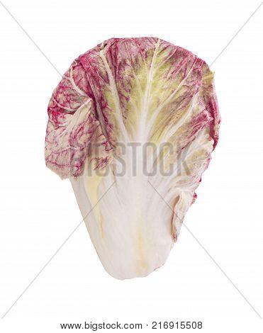 Radicchio red salad isolated on white background