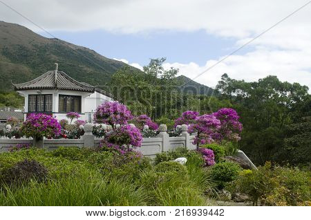 traditional chineese house and garden. Hong Kong