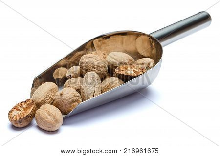 Scoop full of whole nutmegs isolated on white background. Clipping path