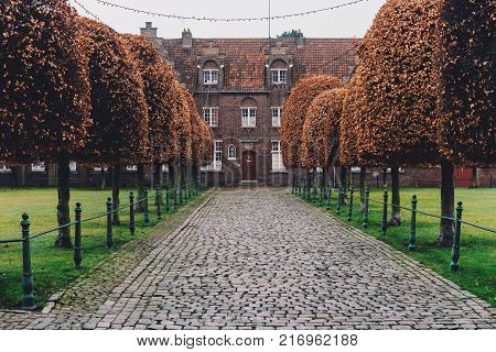 New Saint Elisabeth beguinage in Sint-Amandsberg district, Ghent, Belgium. Also known as Groot Begijnhof Sint-Amandsberg. Authentic brick belgium houses and autumn trees alley by cloudy day in Gent.