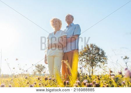 Low-angle view of a romantic elderly couple enjoying health and nature while standing together on a field in a sunny day of summer