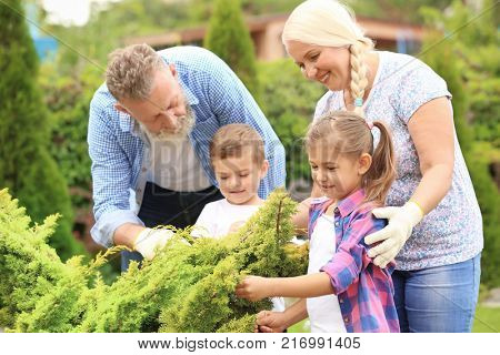 Elderly couple with grandchildren working in garden