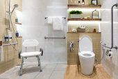 Interior of bathroom for the disabled or elderly people. Handrail for disabled and elderly people in the bathroom poster