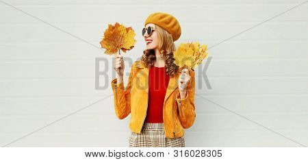 Autumn Portrait Smiling Young Woman Looking On Yellow Maple Leaves On City Street Over Gray Wall Bac