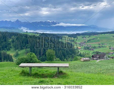 Bench and green landscape in Switzerland