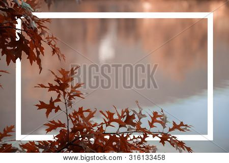 Close-up Of Sea And Autumn Leaves Painted In Living Coral