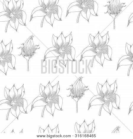 Pumpkin Flowers Seamless Pattern. Vegetable Engraved Style Illustration. Detailed Vegetarian Food Sk