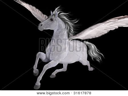 Pegasus on Black Background