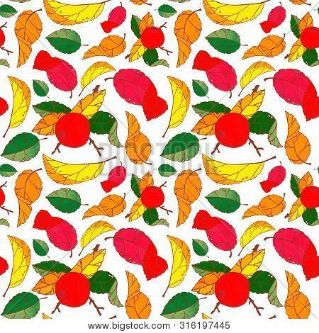 Seamless Pattern With Autumn Leaves Of Apple Tree On A Wite Background