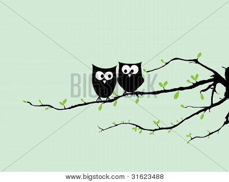 Happy Owls On Tree
