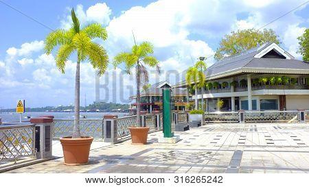 Brunei Darussalam. Palm Trees, Seafront, Bund In Brunei. Sunny Day In Borneo Island