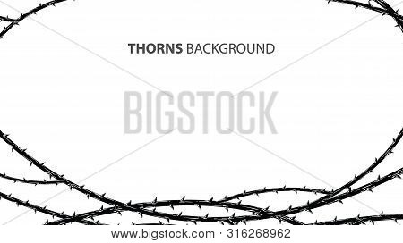 Blackthorn Branches With Thorns Stylish Endless Background. Horror Style Horrible. Vector Illustrati