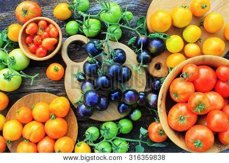 Freshly Picked Heirloom Tomato Harvest: Pear Shaped, Beef Heart, Tigerella, Brandywine, Cherry, Blac