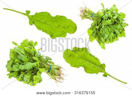 Set From Green Caucasian Cress (tsitsmati) Herbs Isolated On White Background