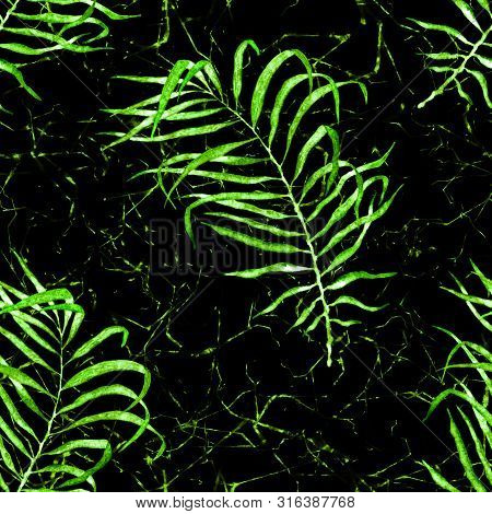 Tropical Seamless Pattern. Watercolor Flapping Palm Leaves, Japanese Bamboo. Green Exotic Swimwear D