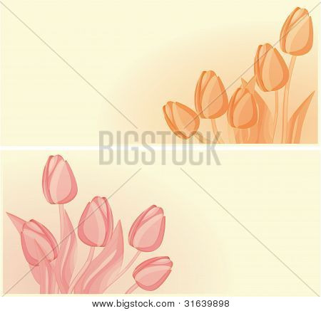 Tulips Card Background