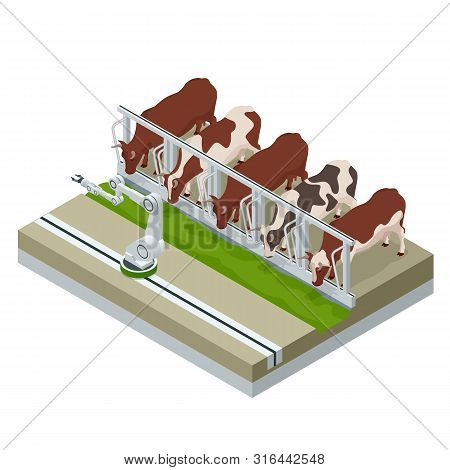 Isometric Irrigational Smart Robotic System On The Dairy Farm. Automated Agriculture, Technology. Ro