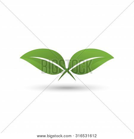 Leaf Logo, Leaf Vector Eps10, Leaf Icon Vector, Green Leaf Logo, Leaf Icon Eps, Leaf Icon Jpg, Leaf