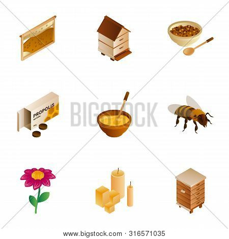 Honey Wax Icon Set. Isometric Set Of 9 Honey Wax Vector Icons For Web Design Isolated On White Backg