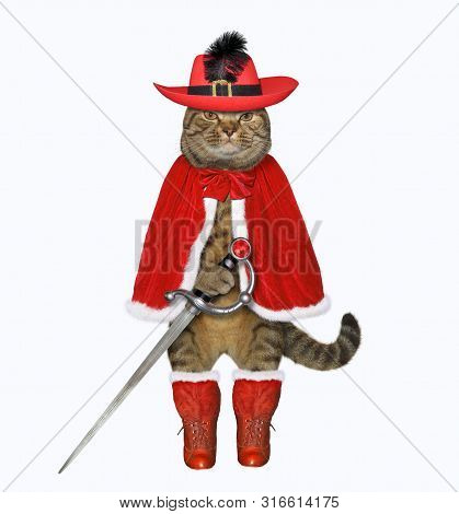 The Cat Musketeer In A Red Cloak, A Hat With A Feather And Boots Has A Sword. White Background. Isol