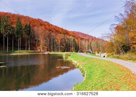 Beautiful Park In The Mountains. Wonderful Sunny Autumn Weather. Walking Path Around The Pond. Trees