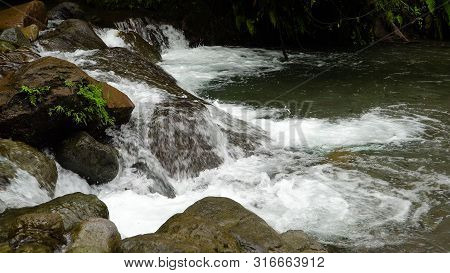 Mountain River In The Rainforest Through The Green Jungle. River In The Green Forest. Camiguin, Phil