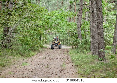 Man Riding A Yellow Quad Atv All Terrain Vehicle On A Sandy Forest. Extreme Sport Motion, Adventure,