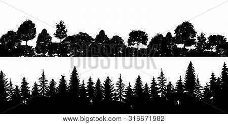 Set Of Black Horizontal Silhouettes Coniferous Treetops Forest Pine, Spruce, Cedar . Coniferous Spru