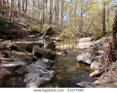 Peaceful stream leading to the Potomac River