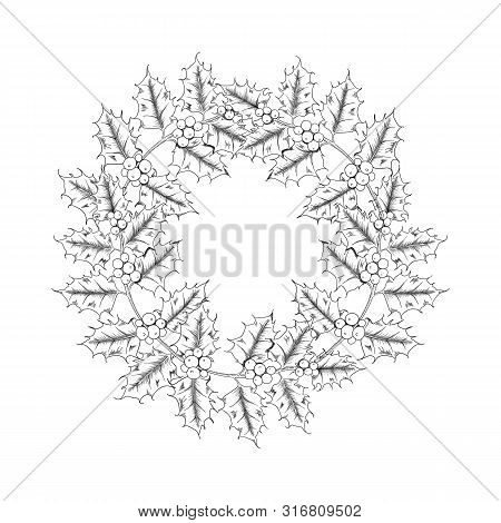 Vector Hand Drawn Holly, Ilex Wreath Branch With Berry And Leaves, Mistletoe Set.