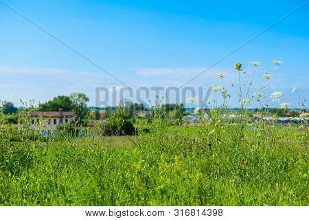 Landscape with the image of italian country side