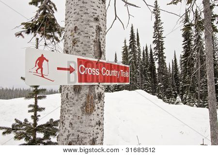 Cross Country Ski Signpost