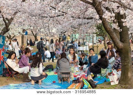 OSAKA, JAPAN, April 7, 2019 : Japanese people are sitting for picnic and playing at the Kema Sakuranomiya Park to celebrate new spring .