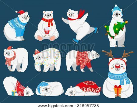 Christmas Polar Bears. Arctic Bear With New Year Gifts, Happy Snow Animal In Merry Christmas Sweater