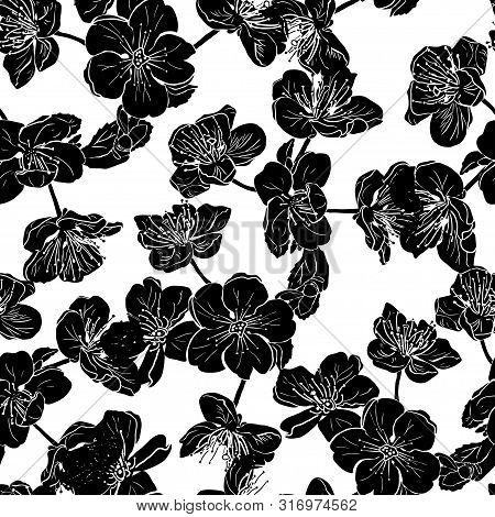 Seamless Pattern With Black Apple Tree Flowers Silhouette In Beautiful Style On White Background. Su