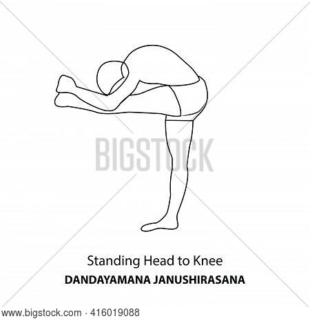 Man Practicing Yoga Pose Isolated Outline Illustration. Man Standing In Standing Head To Knee Pose,