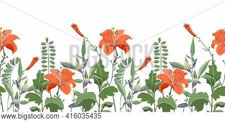 Vector Seamless Floral Border, Pattern. Orange Color Lilies, Daylilies, Green Wormwood, Quinoa.