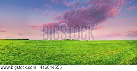 Countryside Rural Field Or Meadow Landscape With Green Grass Under Scenic Spring Sunset Sunrise Sky.