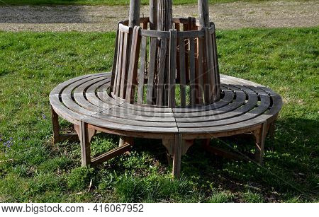 Bench Sitting Round With Wood Paneling Gray Metal Plate Three Seats Around A Tree Around A Gravel Th
