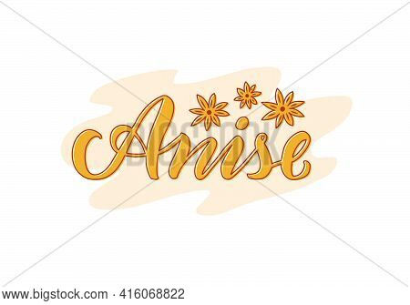 Vector Illustration Of Anise Lettering For Packages, Product Design, Banners, Stickers, Spice Shop P