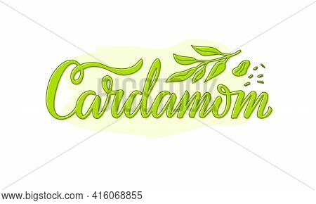 Vector Illustration Of Cardamom Lettering For Packages, Product Design, Banners, Stickers, Shopping