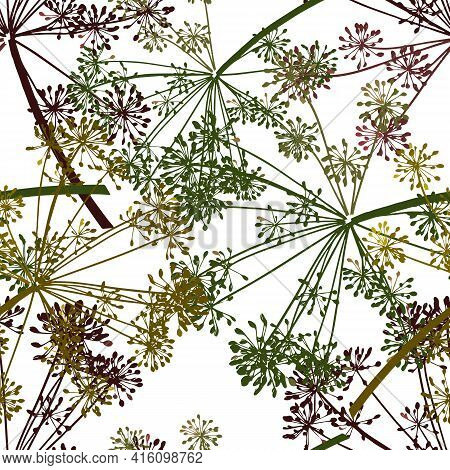 Brown Yellow Green Vector Seamless Pattern Of Dill Seeds Is On A White Background